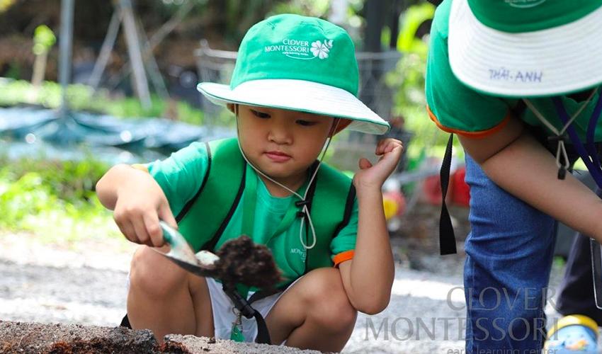 Hoạt động ngoại khóa Clover Montessori